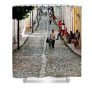 Cobbled Road Shower Curtain