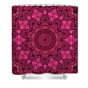 Cobbled Roses Shower Curtain