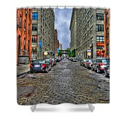 Cobblestone Brooklyn From Dumbo Shower Curtain