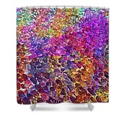 Cobblestones Road Away  Shower Curtain