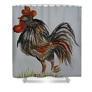 Cock-a-doodle-do Shower Curtain