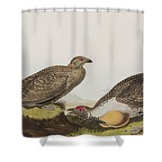 Cock Of The Plains Shower Curtain