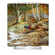 Cock Pheasant And Sulphur Tuft Fungi Shower Curtain by Carl Donner