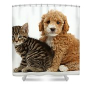 Cockapoo Puppy And Tabby Kitten Shower Curtain