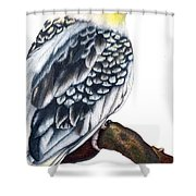Cockatiel 2 Shower Curtain