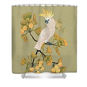 Cockatoo And Ginkgo Tree Shower Curtain
