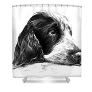 Cocker Norbu Tibet Shower Curtain