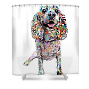 Cocker Spaniel Shower Curtain