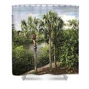 Cocohatchee River  Shower Curtain