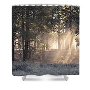 Coconino Dawn Shower Curtain