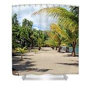 Coconut Beach Shower Curtain