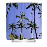 Coconut Grove At Wailua Shower Curtain