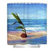 Coconut On Beach Shower Curtain