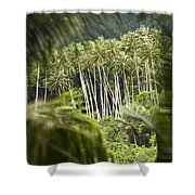 Coconut Palm Trees Shower Curtain