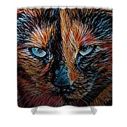 Coconut The Feral Cat Shower Curtain