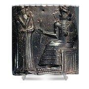 Code Of Hammurabi (detail) Shower Curtain