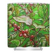 Coffee Cherries Shower Curtain