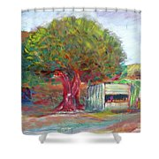 Coffee Tree Aauj Shower Curtain