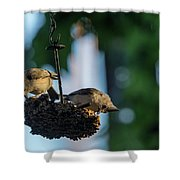 Coffee With The Birds Shower Curtain
