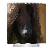 Cogito Shower Curtain