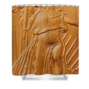 Coin Collector Vii Shower Curtain