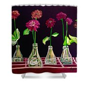 Coke, It's The Real Thing Shower Curtain