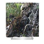 Coki Waterfall Shower Curtain