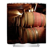 Colchagua Valley Wine Barrels II Shower Curtain