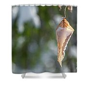 Cold Beauty Shower Curtain