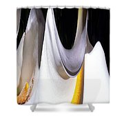 Cold Calla Poles Shower Curtain