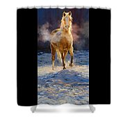 Cold Day For A Warm Welcome Shower Curtain