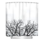Cold Days Shower Curtain