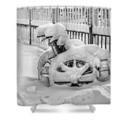 Cold Disposition Shower Curtain