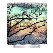 Cold Hearted Bliss Shower Curtain