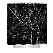 Cold Illumination Shower Curtain