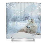 Cold Longings Shower Curtain