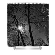 Cold Moon Shower Curtain