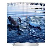 Cold Morning Swim 2 Shower Curtain