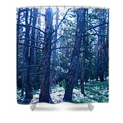 Cold Mountain Light Shower Curtain