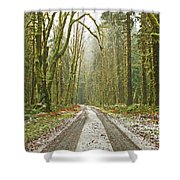 Cold Paths Shower Curtain