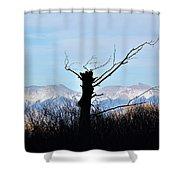 Cold Reach Shower Curtain