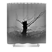 Cold Silence Shower Curtain