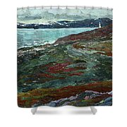 Cold Tundra Shower Curtain