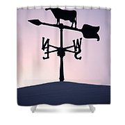 Cold Winter Sky Shower Curtain