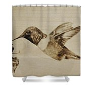 Colibri Shower Curtain