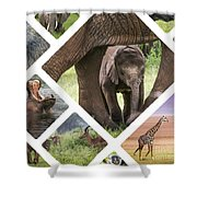 Collage Of Animals From Tanzania Shower Curtain