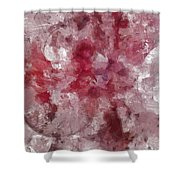 Collateral Mental Picture  Id 16098-021711-82780 Shower Curtain
