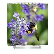 Collection Of Pollen Shower Curtain