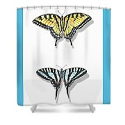 Collection Of Two Butterflies Shower Curtain