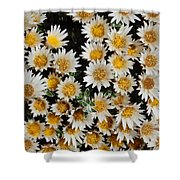 Collective Flowers Shower Curtain